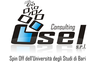 OSEL Consulting SRL