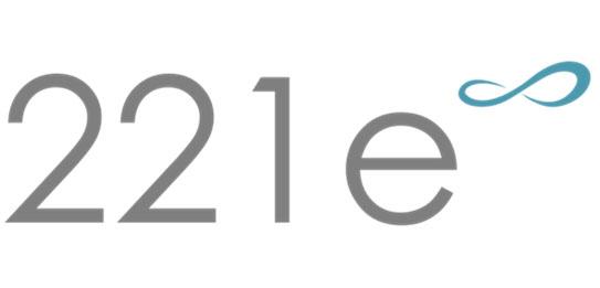 221e Srl
