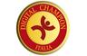Digital Champions Academy