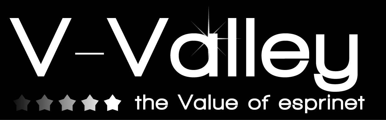 V-Valley S.r.l.